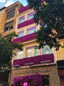 Tienda Salvador Bachiller