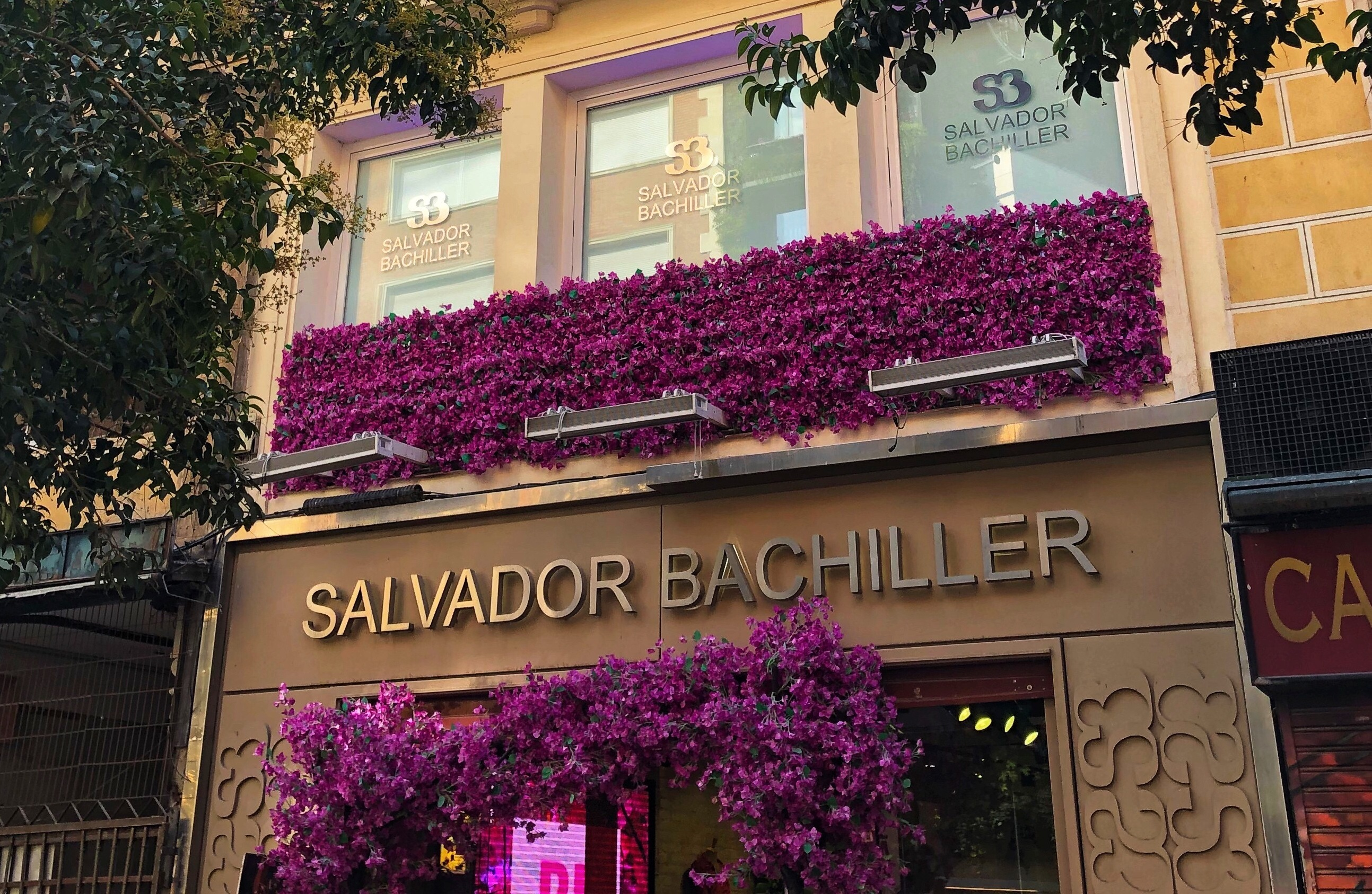Edificio Salvador Bachiller